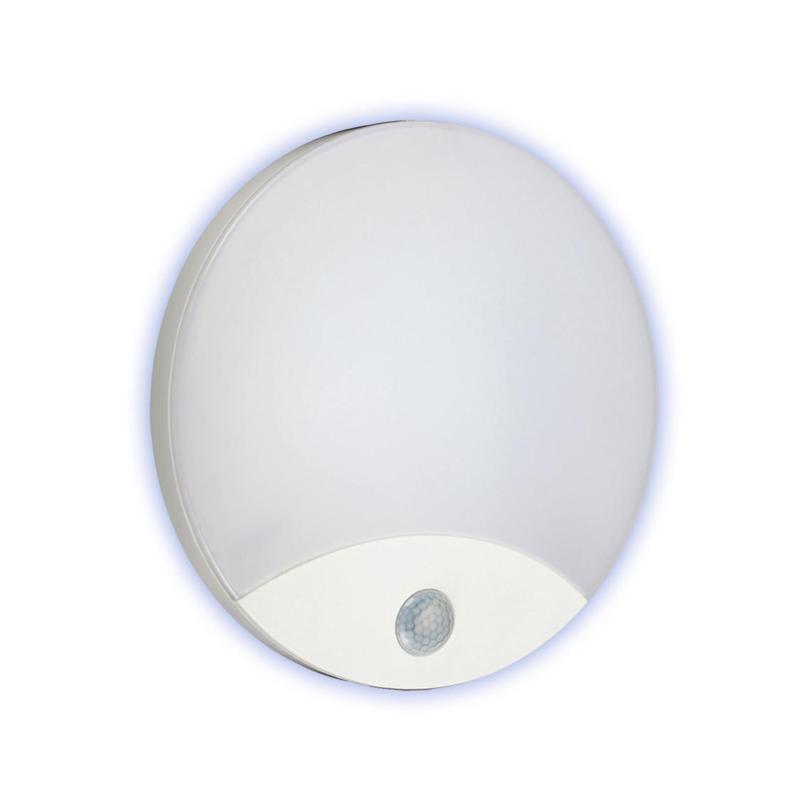 Lampada da parete Lampada da soffitto plafoniera lampada parete lampada muro