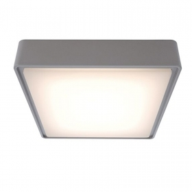 Ceiling light with external le
