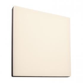 Wall light exterior IP54 ceili