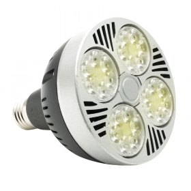 Lamp E27 35W LED 3500 lumen bulb PAR30 230v cold light warm natural