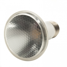 Lamp spot floodlight 6W led PAR20 light bulb E27 220V light 4200K IP20