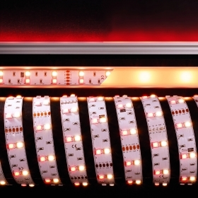 Strip professional led RGBW RG