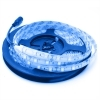 Strip silicone 300 LEDS SMD-5050 60W light BLUE 5 meters 12Vdc for external IP65