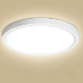 Ceiling light round lamp LED light ceiling wall 24W yield 250W high brightness